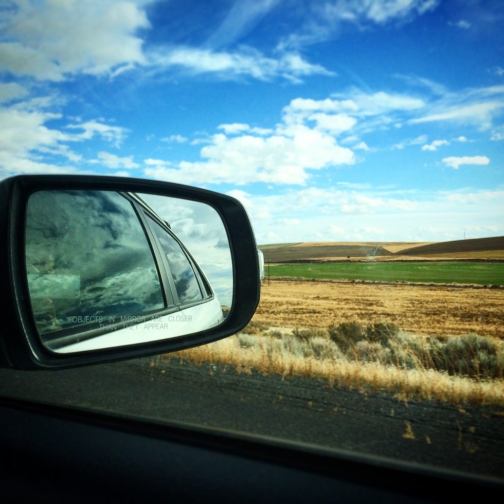 Side view mirror of a car taking a family on a family gap year, with wheat fields in the background