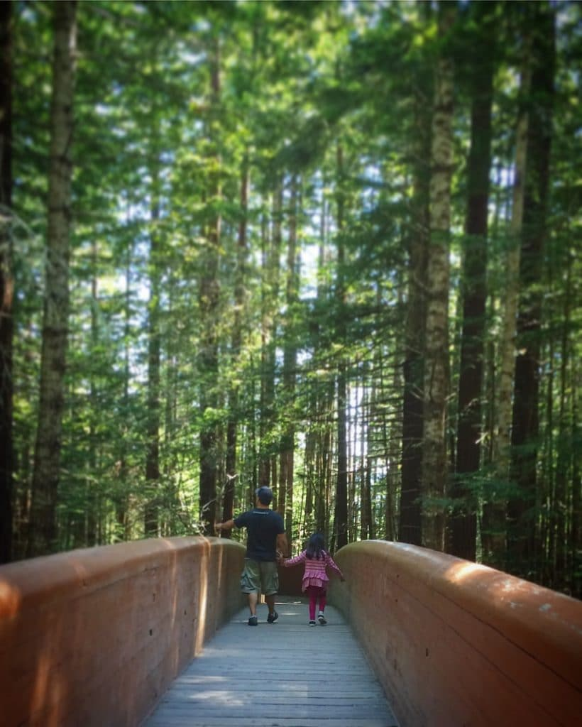 A father and daughter visiting the Redwoods with kids, hiking along Lady Bird Johnson Grove trail at Redwood National Park