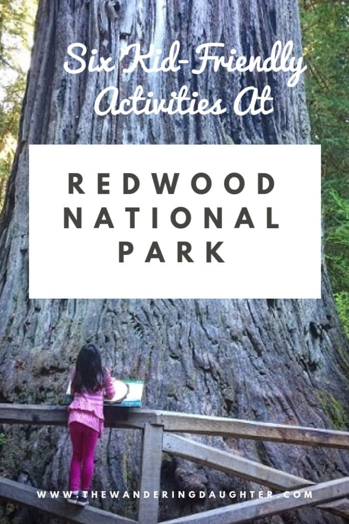 Six Kid-Friendly Activities At Redwood National Park | The Wandering Daughter | Kid-friendly ideas for families visiting the Redwoods with kids. Activities and hikes for kids at Redwood National Park.