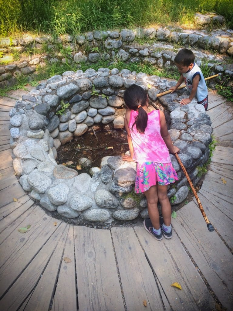 Children exploring nature and an old hot springs tub at Mount Rainier National Park