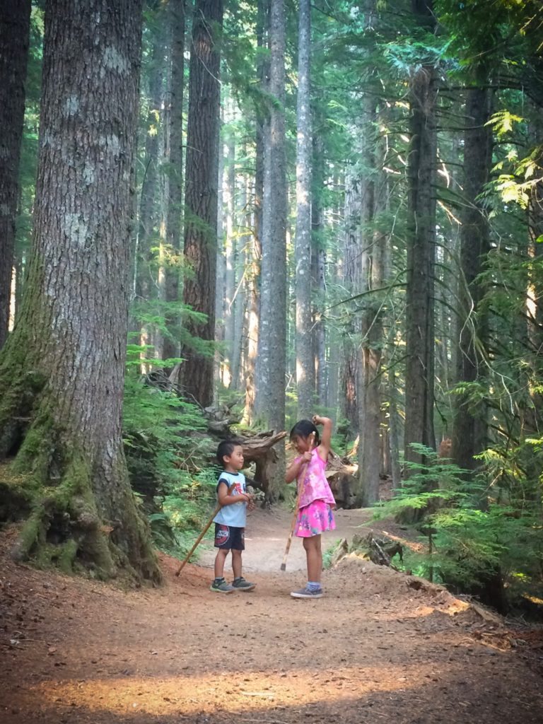 Children exploring nature in Mount Rainier National Park