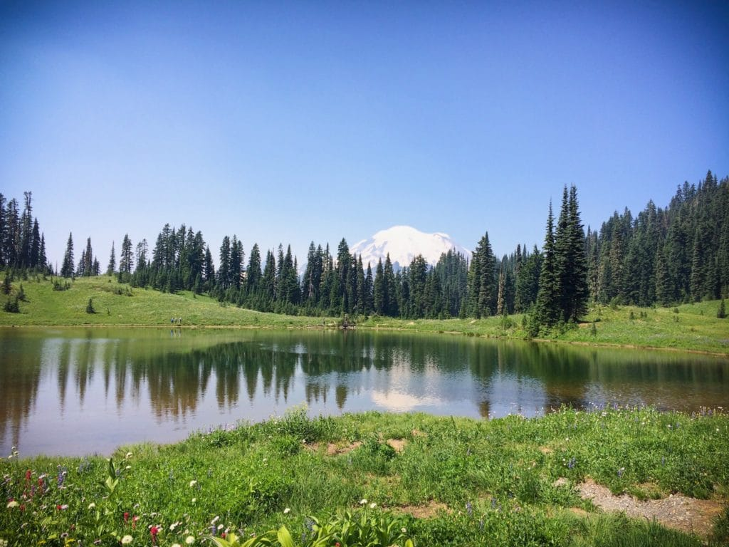 Mount Rainier National Park, a great place for Pacific Northwest getaways