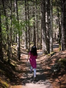 A child running through some hikes at North Cascades National Park
