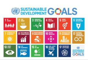The UN Sustainable Development Goals, a model for ethical family travel