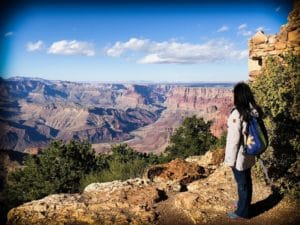 A mother at the Grand Canyon, taking her family around the world