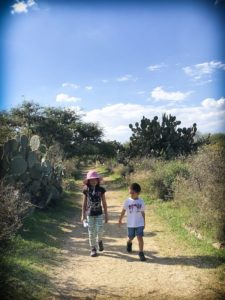Kids from a worldschooling family walking through a botanical garden in Mexico