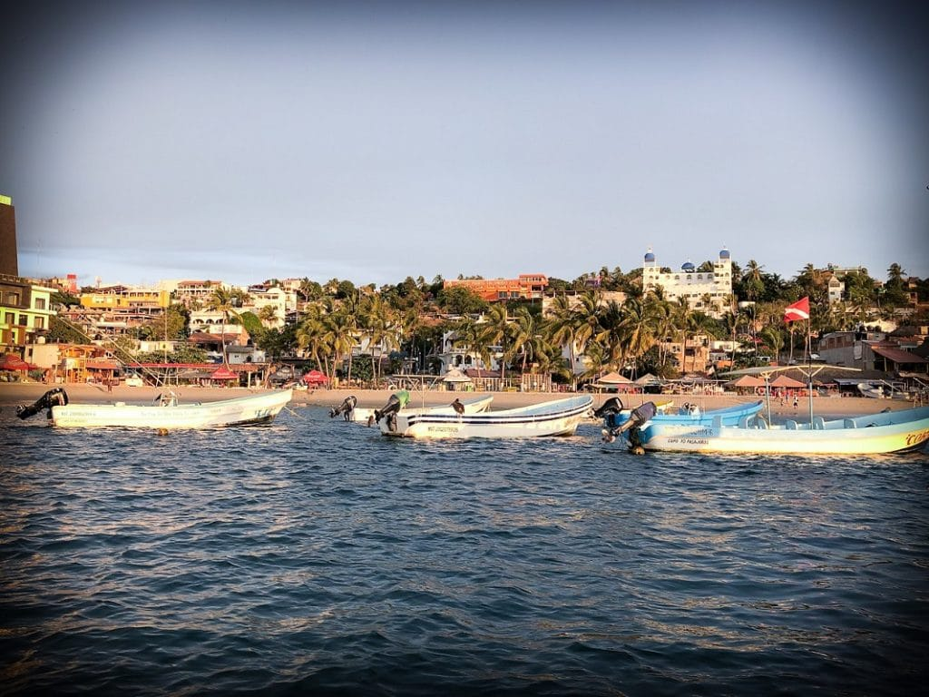 Taking a dolphin trip in Puerto Escondido, Mexico