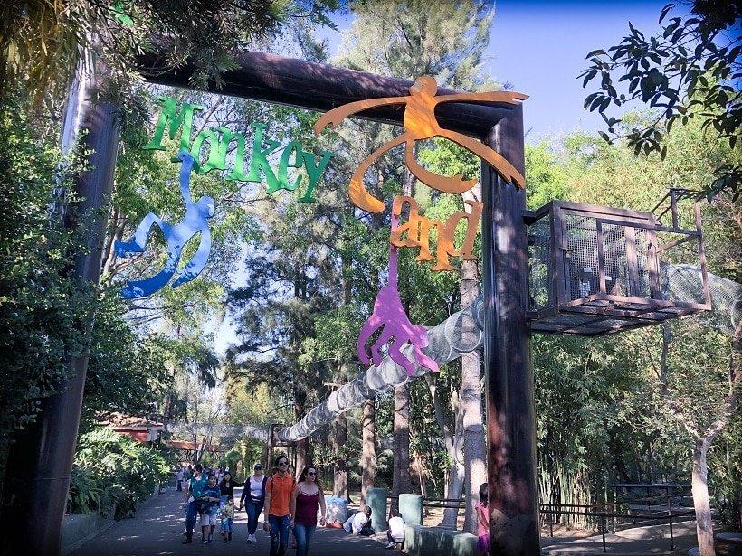 Visiting Guadalajara Zoo with kids