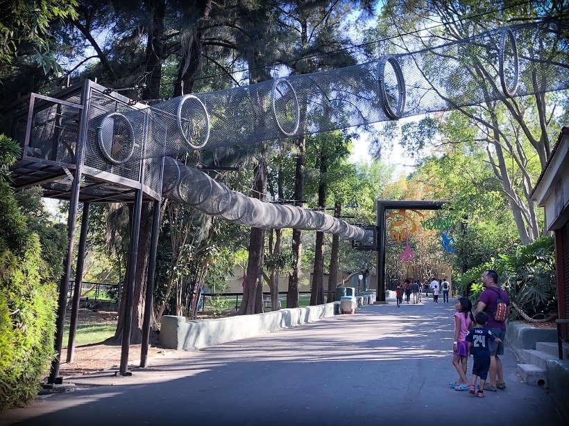 Visiting the Guadalajara Zoo with kids
