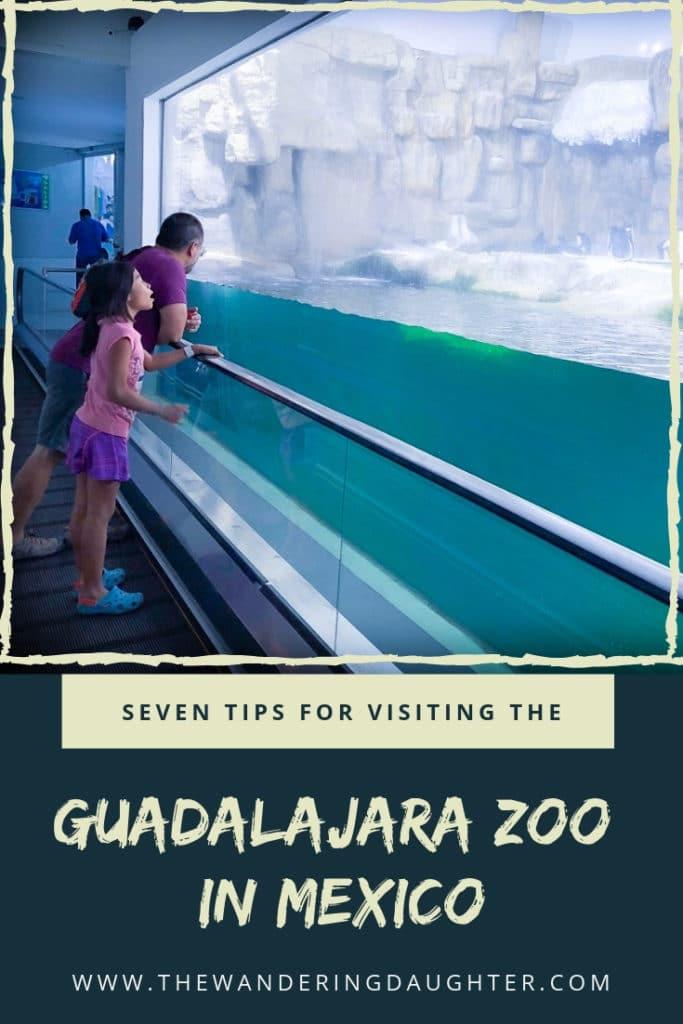 Seven Tips For Visiting The Guadalajara Zoo In Mexico | The Wandering Daughter |  Tips for families who want to visit the Guadalajara Zoo, and looking for other things to do in Guadalajara, Mexico. #familytravel #Mexico #Guadalajara