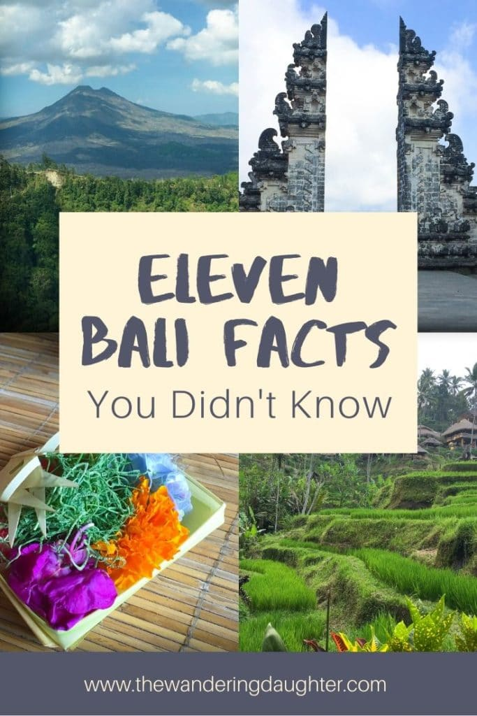 Pinterest image for a blog post. Eleven Bali Facts You Didn't Know | The Wandering Daughter | Eleven things about Bali that visitors may now know before coming to the island. Facts about Bali to help visitors learn more about this island in Indonesia.