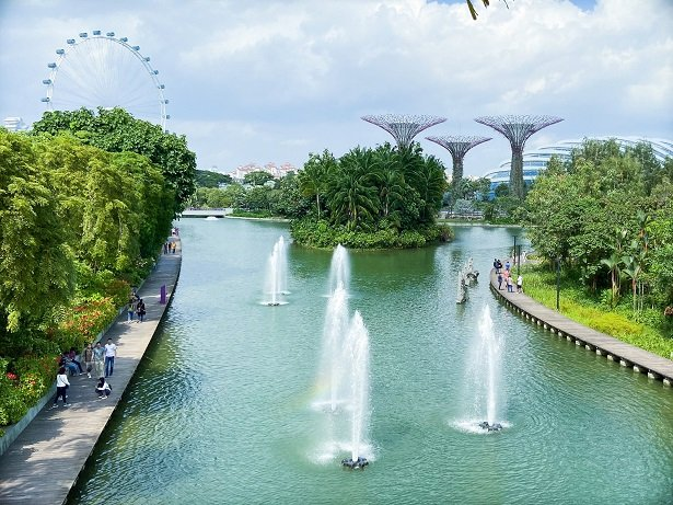 Fountains in a pond at Gardens by the Bay, one of the things to do in Singapore on a budget